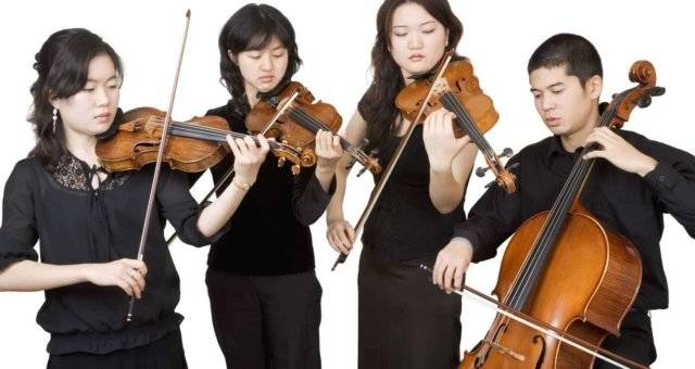 Learn to Play Violin with Best Teachers in Singapore