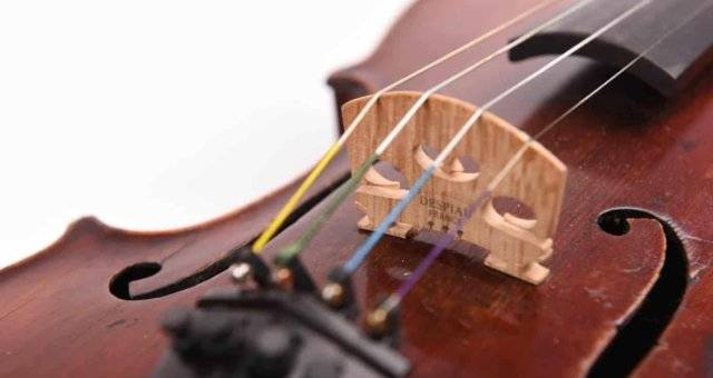 Learn Violin Lessons in Singapore from Learn Violin Lessons