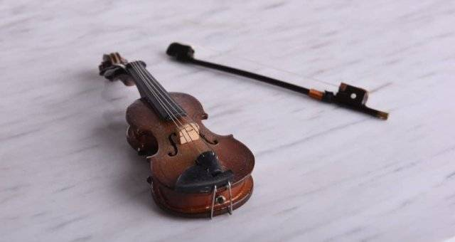 Best Opportunity for Beginners to Learn How to Play Violin