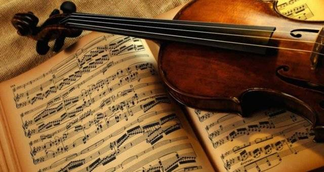 Add Music to your Life with a Violin
