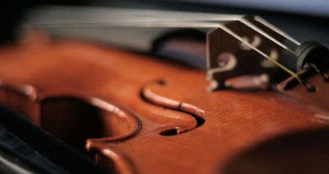 Enroll in the Best Violin School for Quality Violin Lessons for Beginner SG