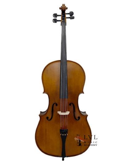 Beginner Student Cello